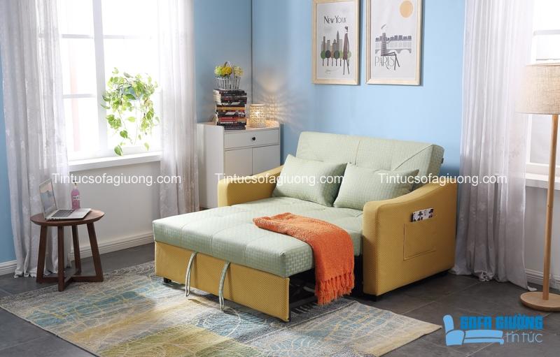 Ghế sofa giường đa năng luôn luôn đa dạng về màu sắc
