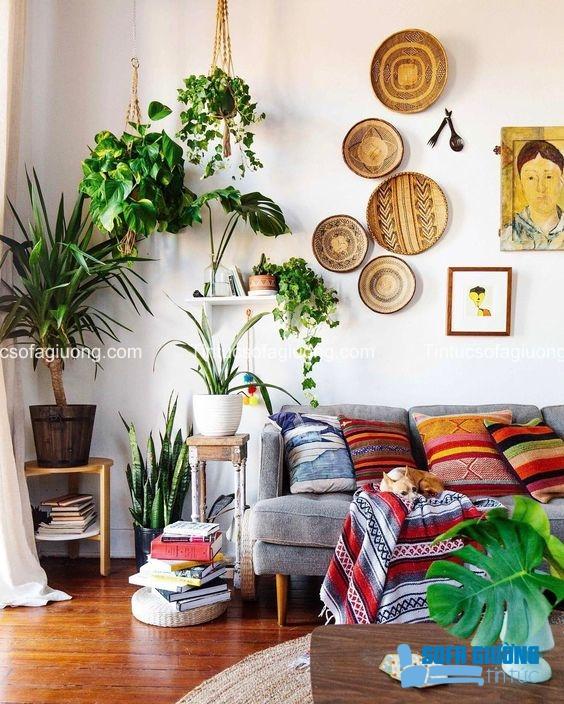 Gối ôm với nhiều màu sắc sặc sỡ tô điểm cho không gian thêm đẹp